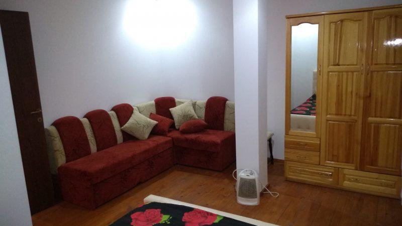 Самостоятелни стаи